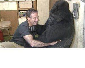 Robin Williams and Koko